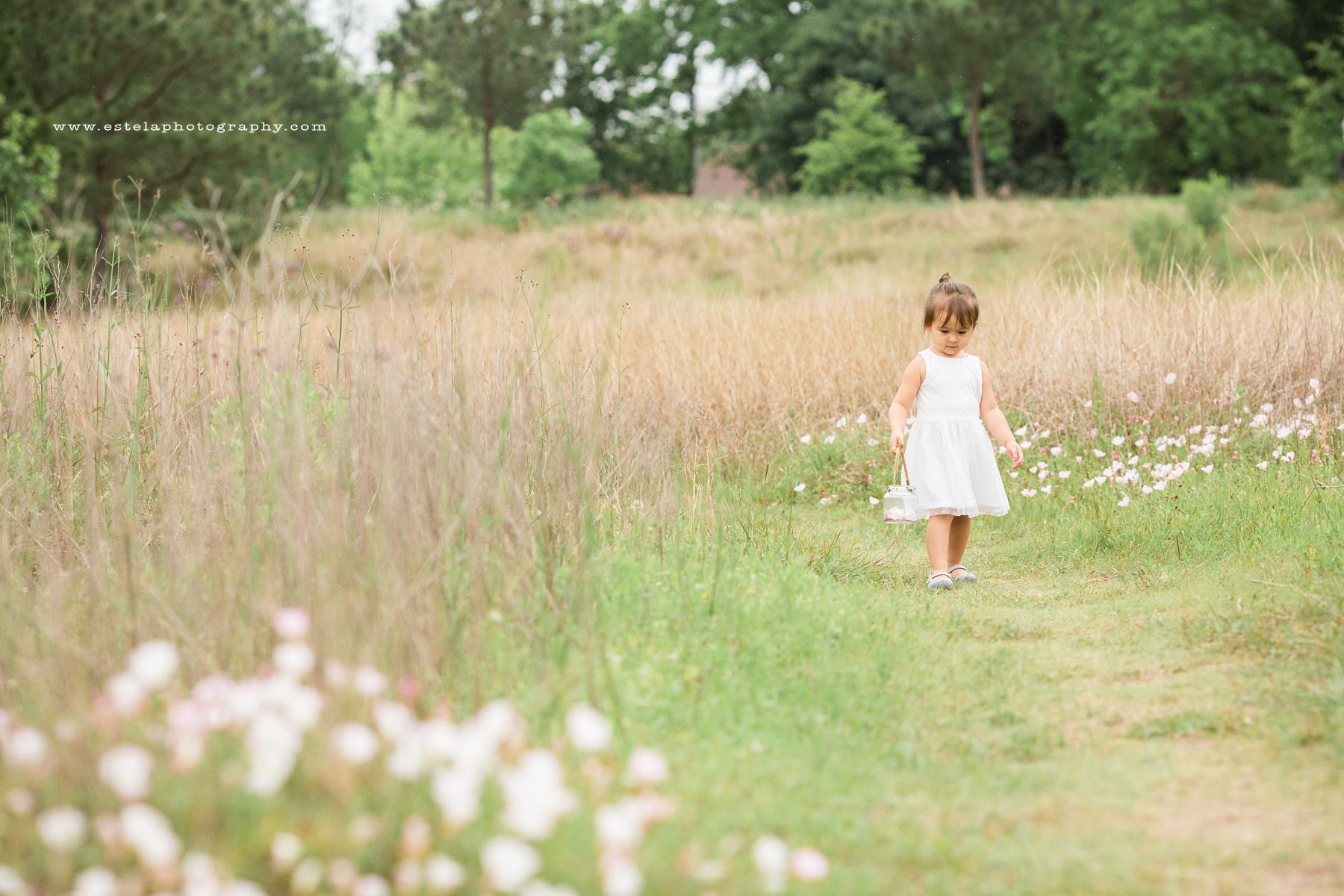 Girl in an outdoor field. Family Photography