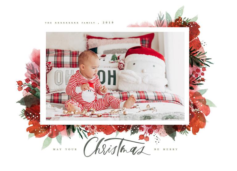 Estela Giargei Photography Christmas Mini Photography Session